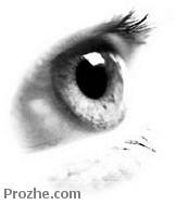 پایان نامه حساسیت چشم